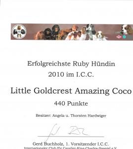 erfolgreichste Ruby Hündin 2010