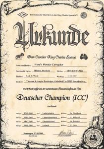 champions-2009-0011