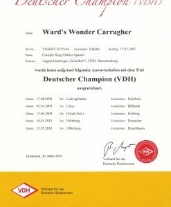 champions-2009-006