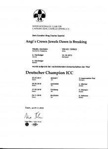 icc-zucht-2018-001