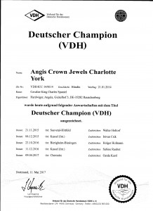 vdh-champion-charly-mai-2015