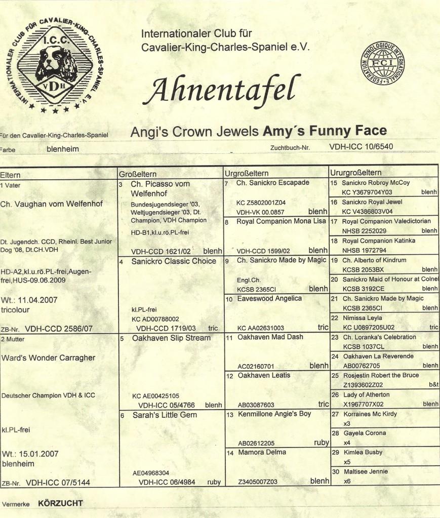 ahnentafel-scarlett-0082